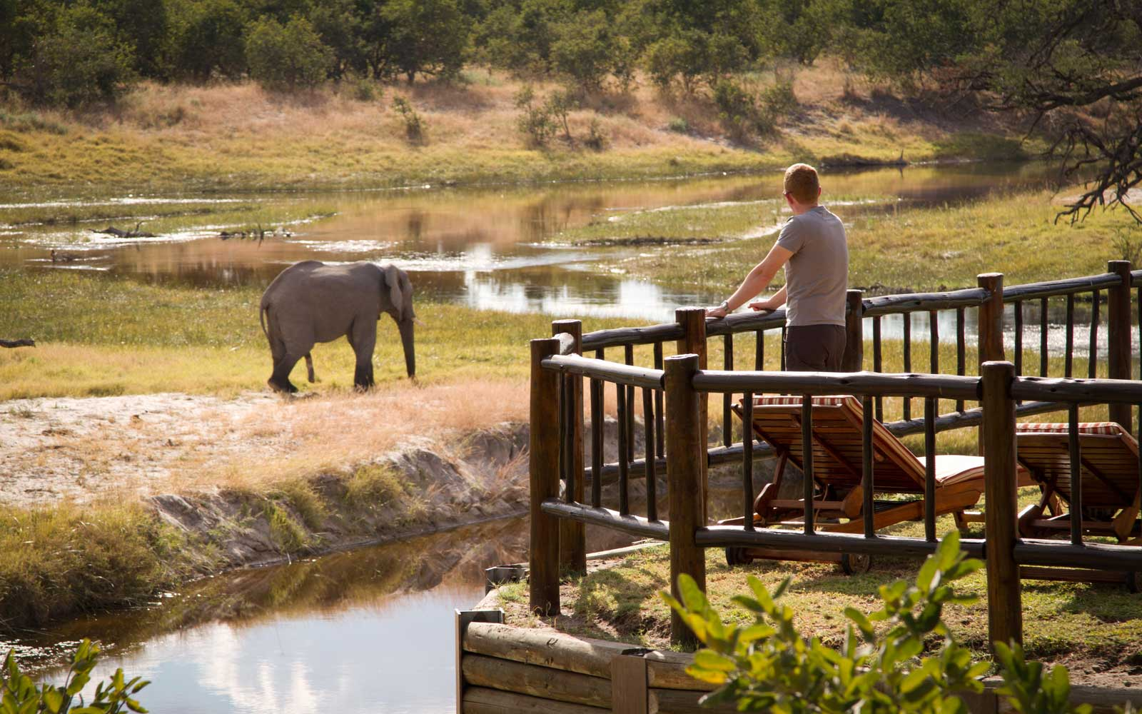 Belmond Savute Elephant Lodge