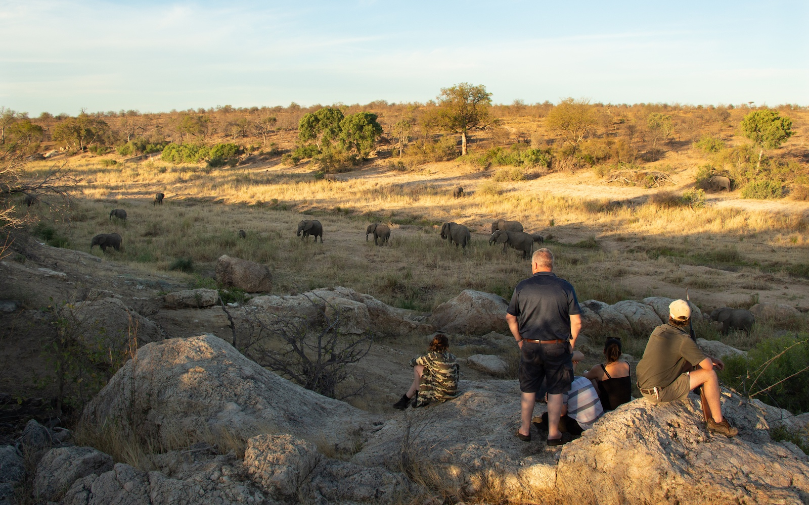 Tuskers Safari Camp