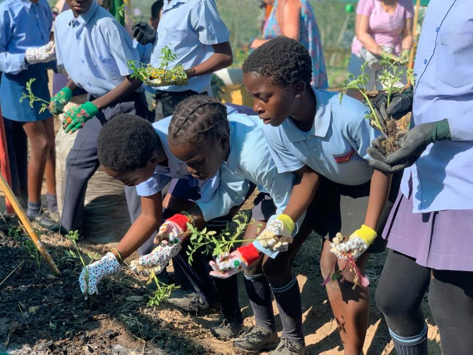Teaching sustainable farming & providing nutritious meals for crèche kids
